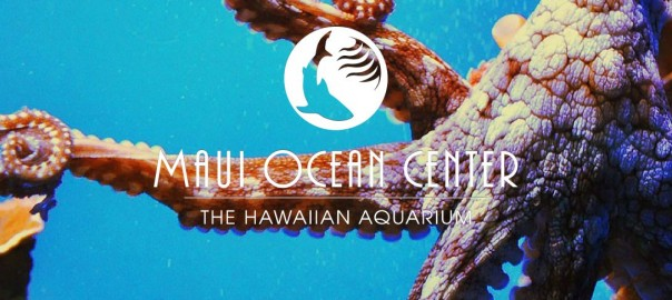 The Maui Ocean Center